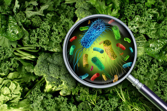 Bacteria And Germs On Vegetables