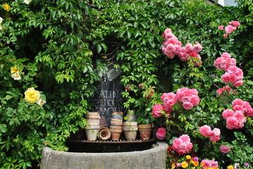 Obraz Ogród przy domu - fototapety do salonu