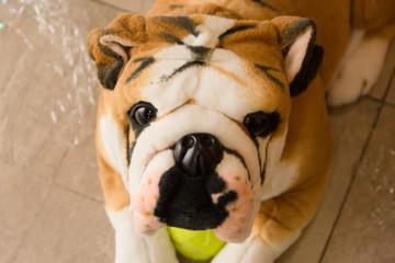 decoração cachorro