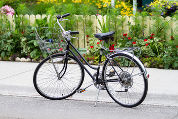 Bicycle 30