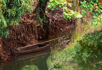 Canoa parada de baixo de árvore na margem do rio