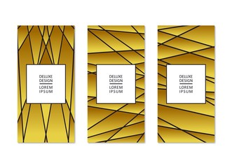 Luxury flyers design. Abstract linear pattern. Vector template