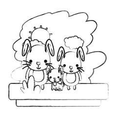 grunge family rabbit cute wild animal