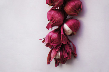 Hanging bunch bundle of red onion
