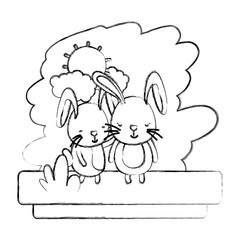 grunge couple rabbit nice wild animal
