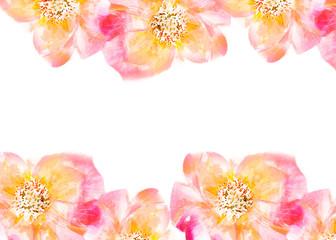 Flower textile design pink