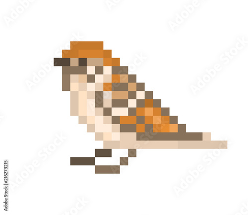Pixel art sparrow isolated on white background  8 bit little