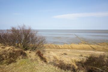 Naturschutzgebiet Morsum Kliff, Morsum,  Sylt, Nordfriesische Insel, Nordfriesland, Schleswig-Holstein, Deutschland, Europa