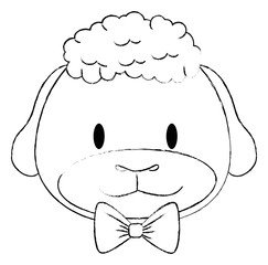 cute and adorable sheep character