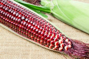 Fresh red corn.