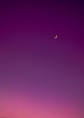 Beautiful moon in a purple degraded background in the sky