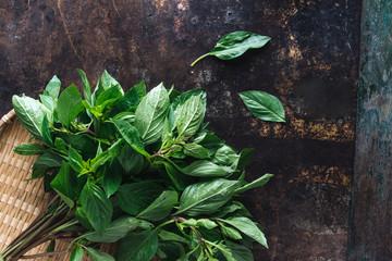 Vietnamese basil on rustic background