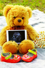 Pregnancy. Waiting for the child.Teddy bear with the ultrasound result.  Baby shoes for girls.