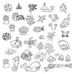 Big collection of summer and underwater icons