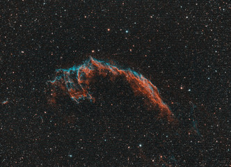 Close up of NGC 6995 better known as Veil Nebula, taken in narrowband filters with apochromatic refractor telescope in Cygnus constellation.