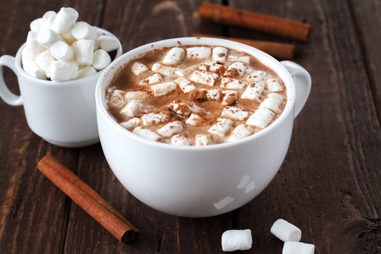 Large white cup of cocoa with marshmallow