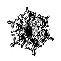Snowflake on white background. This illustration based on macro photo of real snow crystal: beautiful star plate with perfect hexagonal symmetry, relief surface and unusual central pattern.