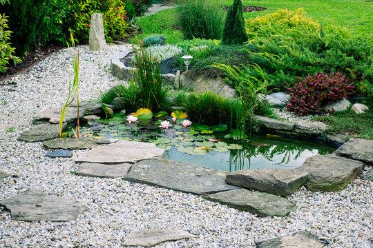 Garden architecture. garden pond. ornamental bushes.