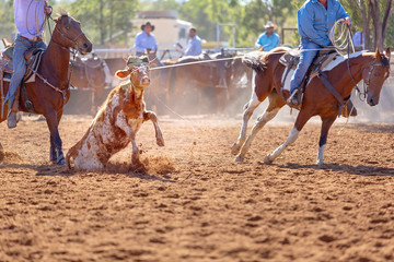Australian Team Calf Roping Rodeo Event
