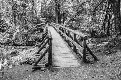 Bridge at Bagby Hot springs