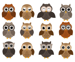 Owls icons, bright owls with different emotions. Different characters  of owls.