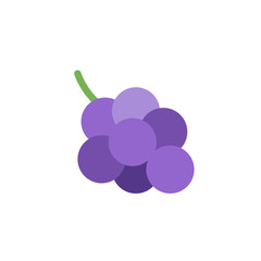 Grape fresh fruit flat vector illustration icon symbol