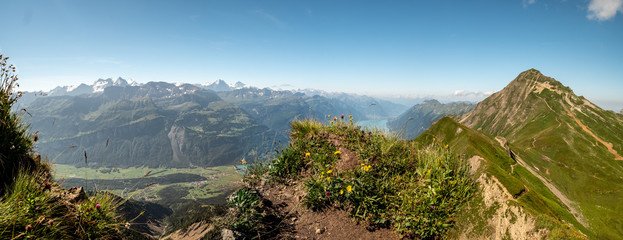 panoramic view over the swiss alps from the peak of a mountain, brienzer rothorn
