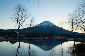 Mt.Fuji in autumn at Fumotoppara Camp site in japan.