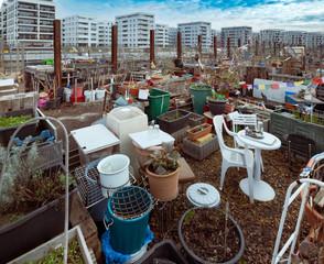 kleiner Stadtgarten vor Häuserkulisse