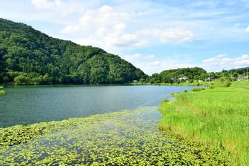 大町市 中綱湖