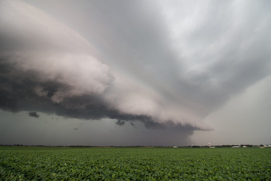 Looking along the leading edge of a severe thunderstorm with a menacing shelf cloud over a soybean field in the midwest.