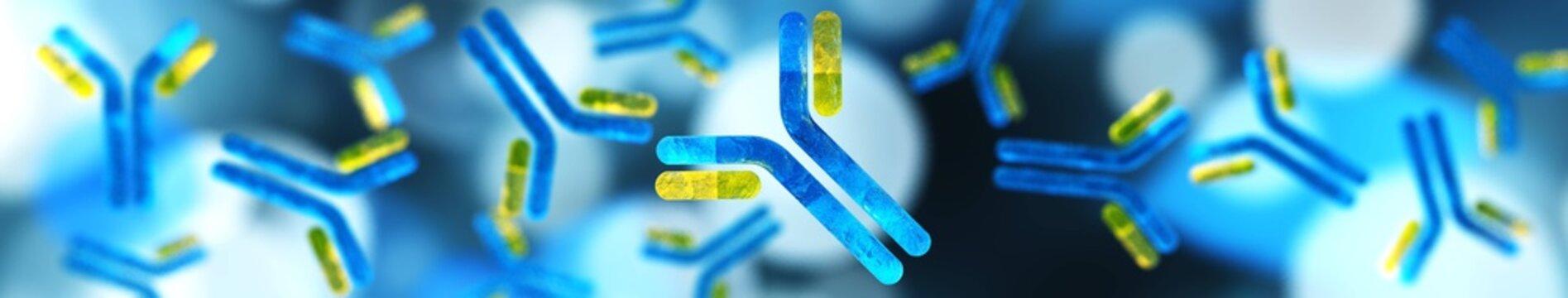 antibodies, immunoglobulins, the immune system,