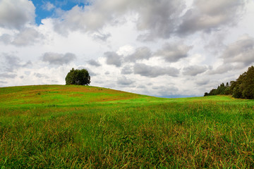 green hill on a field with a lonely tree under the clouds