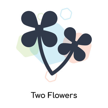 Two Flowers icon vector sign and symbol isolated on white background, Two Flowers logo concept