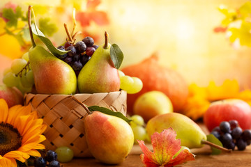 Autumn still life with seasonal fruits