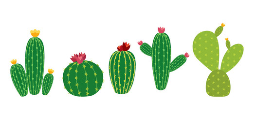 Cactus Icon Collection Set Vector Illustration