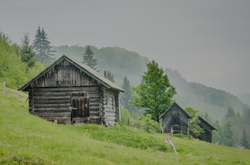 Wooden barn located on the slope of the hill, covered with forest and meadows. Ecology concept of clean environment. Natural background image. Taken at spring day at Carpathian mountains, Ukraine.