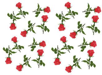 Beautiful rose flower pattern.