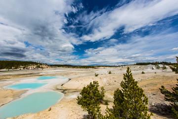 parco Nazionale di Yellowstone, zona del Bacino di Norris Geyser con sorgente di acqua termale calda