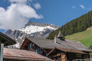 Alps panorama from Murren