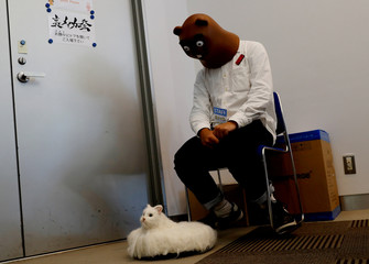 A man wearing Itachiguma mask looks at robot cat Ballon, which moves on the floor, at its photo opportunity during the Underground Maker Festival in Tokyo