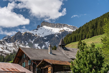 Murren roofs and alps view