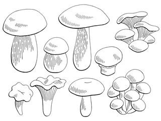 Mushrooms set graphic black white isolated sketch illustration vector