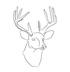 deer portrait lines, vector
