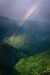 Wall Mural - Natural Landscape Scenery of The Mountain Green Forest With Spectrum Rainbow, Nature Outdoor Scenic of Jungle and Colorful Rainbow at Rainy Season. Ecology of Rainforest Environmental