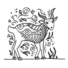 Goat doodle. Hand drawn vector goat. Vector illustration for poster, web.  Isolated on white background