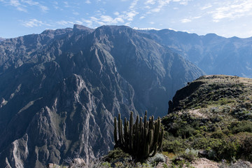 The stunning mountain landscapes of Colca Valley Peru