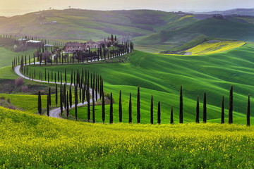 Papiers peints Toscane Green hills of Tuscany