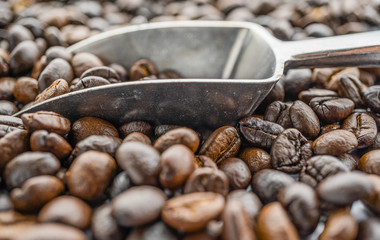 coffee beans with metal scoop