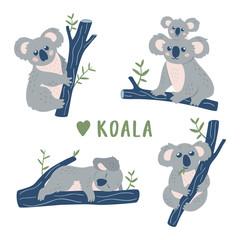 Hand drawn doodle Koala Bears collection. Cute Koala design template. Vector clipart.